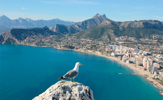 Calpe Rent A Car